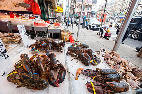 Canal Street.Manhattan_MG_3544.JPG