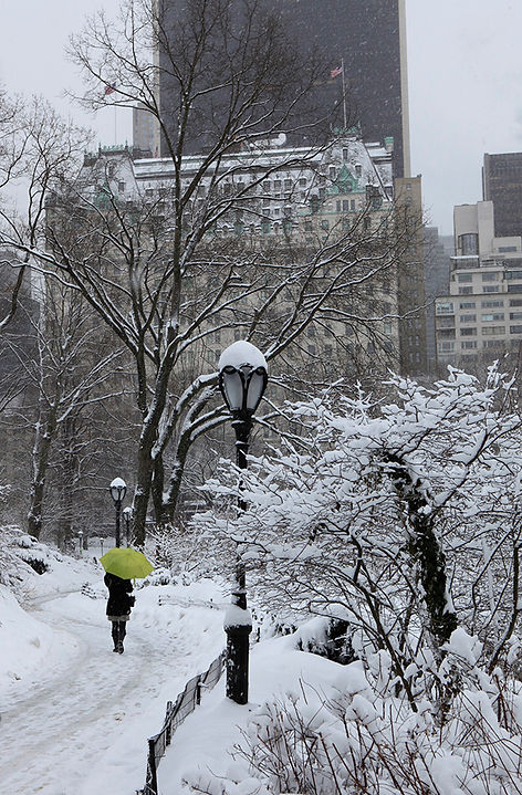 Central Park Winter New York