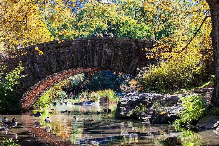Central Park | Manhattan | New York