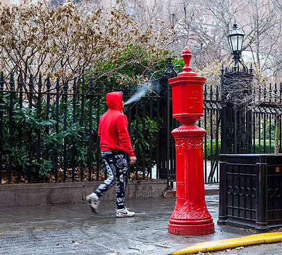 Gramercy Park/ NYC