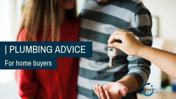 Plumbing advice for home buyers