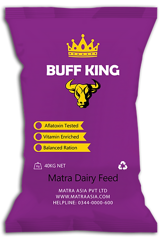 Buff King final.png