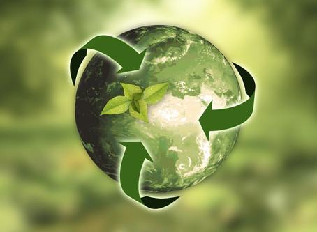 Self-Sustainable School