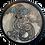 Thumbnail: Grey Taniwha