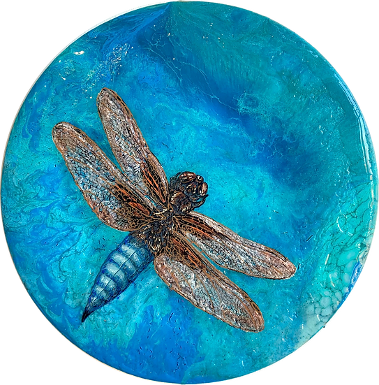 Shapeshifter 2 - The Mayfly/Dragonfly Series
