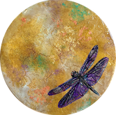 Migration South - Mayfly Dragonfly Series