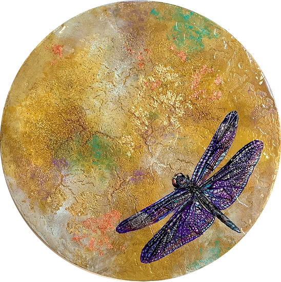 Migration South - The Mayfly/Dragonfly Series
