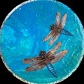 Shapeshifter 1 - The Mayfly Dragonfly