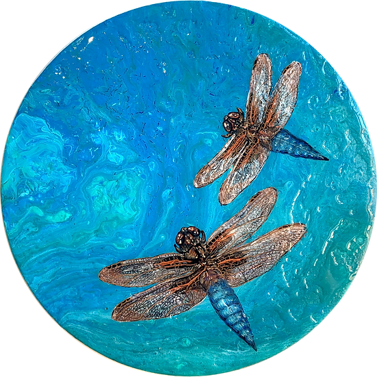Shapeshifter 1 - The Mayfly/Dragonfly Series