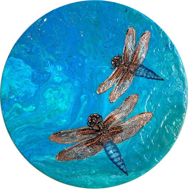 Shapeshifter 1 - The Mayfly Dragonfly series