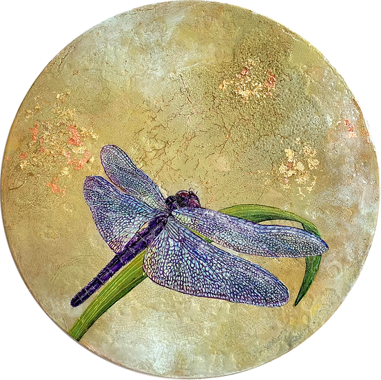 What would you do if you only had one day #12 - The Mayfly/Dragonfly Series