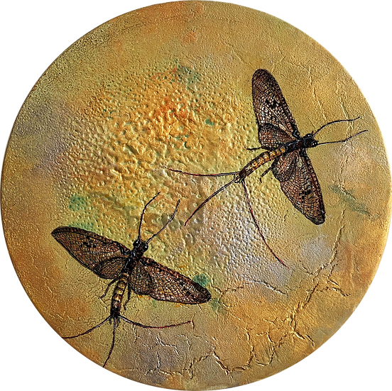 Lunar's last dance - The Mayfly/Dragonfly Series