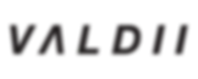 VALDII Text Logo (BOLD).png