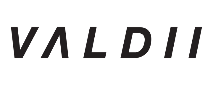 VALDII Text Logo (BOLD).png