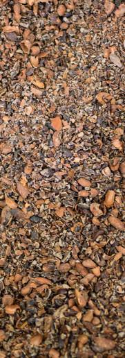 process_cocoa shells.jpg