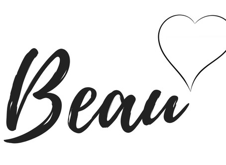 Beau (Bedside Manor | Chapter One)