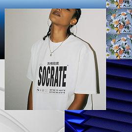 3519_B_WHITE__socrate_.jpg