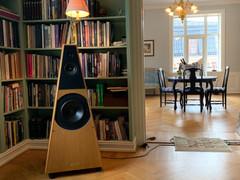Lyden ble formidlet av et par eldre Response høyttalere der elementene er oppgradert. I mine ører spilte de helt supert.