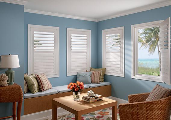 shutter pic for vistaprint.JPG