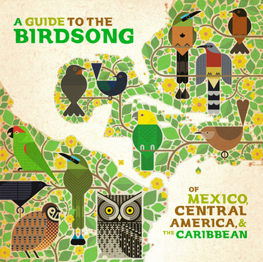 Review: VARIOUS 'A GUIDE TO THE BIRDSONG OF MEXICO, CENTRAL AMERICA AND THE CARIBBEAN' LP