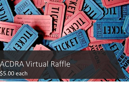 Single Trivia Night Raffle Ticket