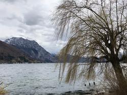 Альпы и озера, Хальштадт