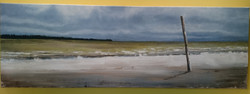 """balade en baie de Somme"" 2013"