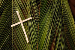palm-sunday-usa