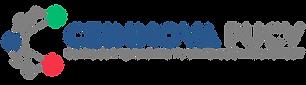 logo_logo-ceinnova-color_png.png