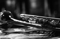 Nicholas Payton's Horn
