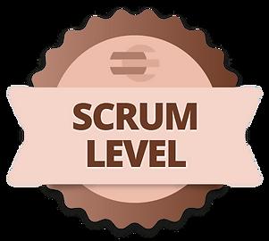 scrum_level.webp