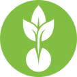 GREEN_SEED_LOGO.png