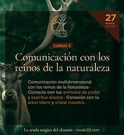 Chamanismo_cursos_6.jpg