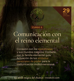 Chamanismo_cursos_47.jpg