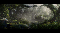Forest_FINAL_QI