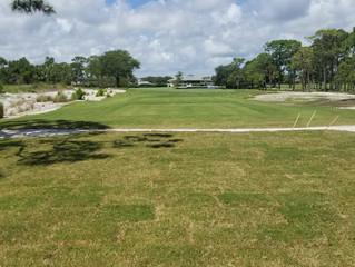 Update from the HSGC Golf Course Maintenance Team: 07-24-20