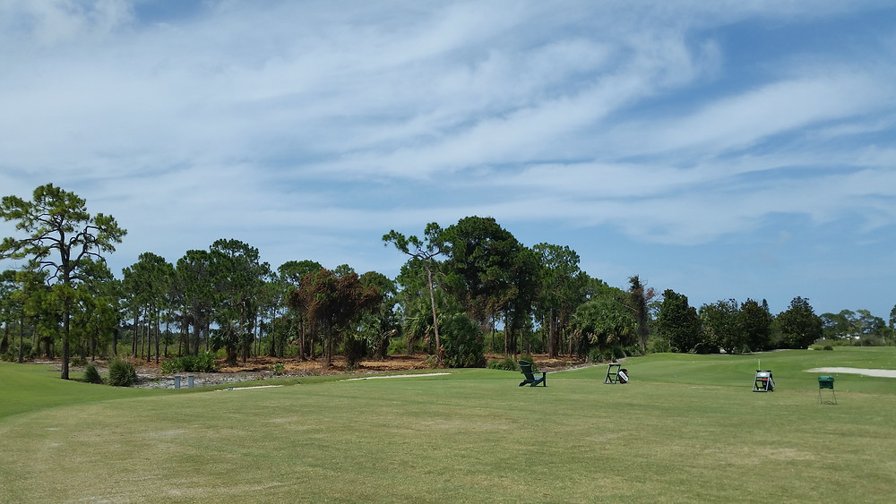 upland area next to driving range and first tee