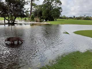 Torrential Rain Keeps Course Closed Oct. 4