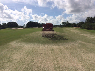 Course Update - Sept. 14