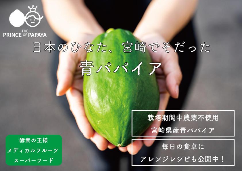 グリーンカレーEC-3-2-2-3.jpg