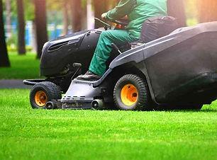 Grass-cut-2-768x566.jpg