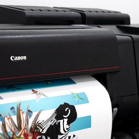 Choosing the right paper for your giclee print