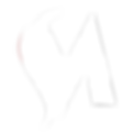 Makarov-masterclass_logo_white_transpare