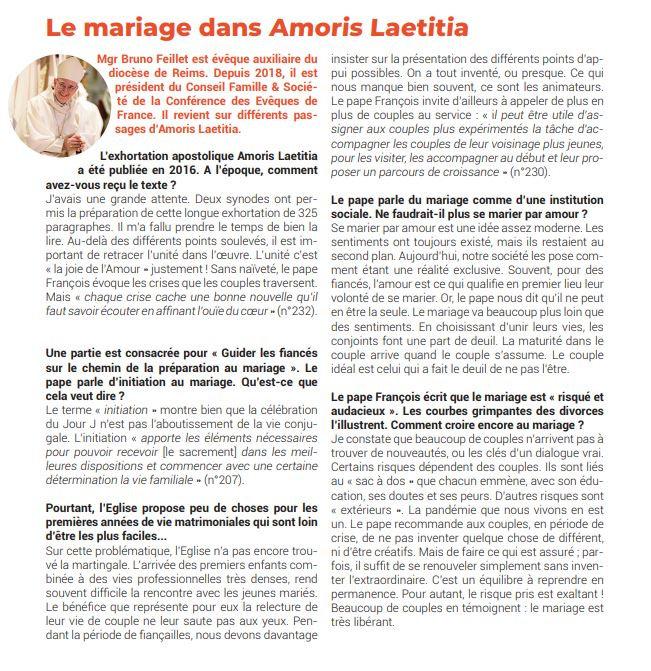 Mgr Feillet Amoris Laetiatia.JPG