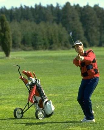 Golf_2011.jpg