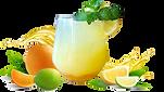 Citrus Splash II_edited.png