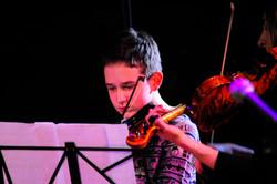 Violin (5)
