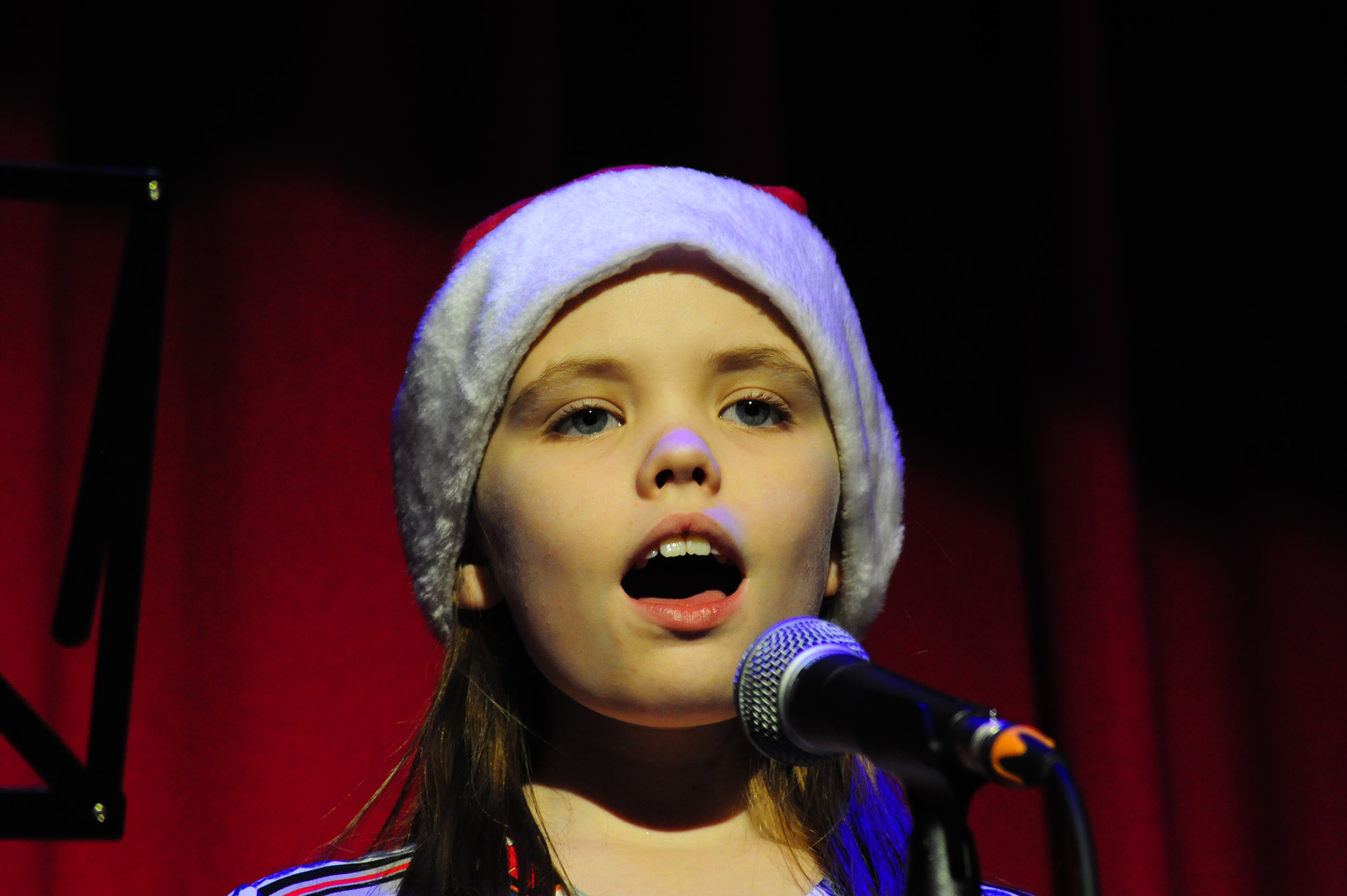 singers (4)
