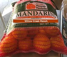Bag of Mandarins.jpg