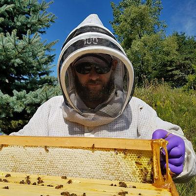 Ingrao Beekeeping headshot.jpg